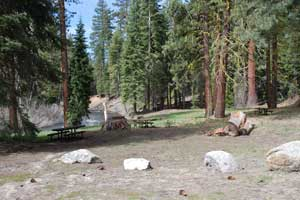 Cottonwood Creek picnic area on the Clark Fork