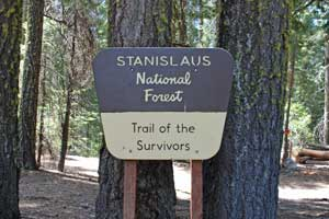 Photo of Trail of the Survivors