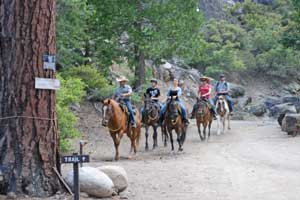Photo of Trail ride at Kennedy Meadows